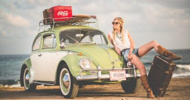 retro vw bug cute hippie girl
