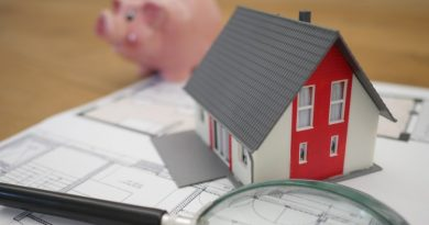 new home piggy bank savings examine carefully