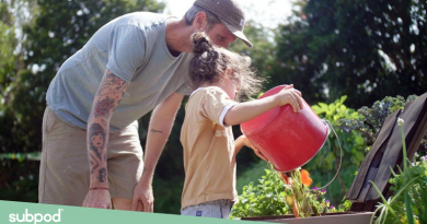 teach-children-to-compost-subpod-overview