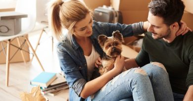 young-new-homeowners-having-a-break-from-moving-house-with-pet