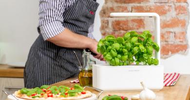 click-and-grow-indoor-basil-growing-gourmet-pizza