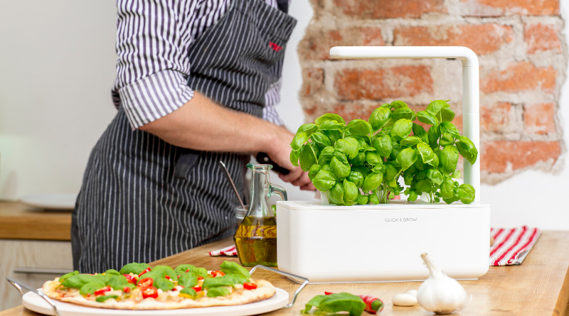 click-and-grow-indoor-basil-growing-gourmet-pizza