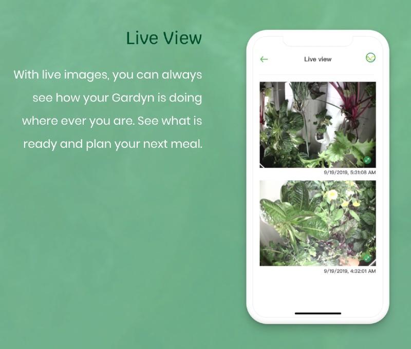 gardyn-smart-indoor-garden-assistant-kelby-live-view
